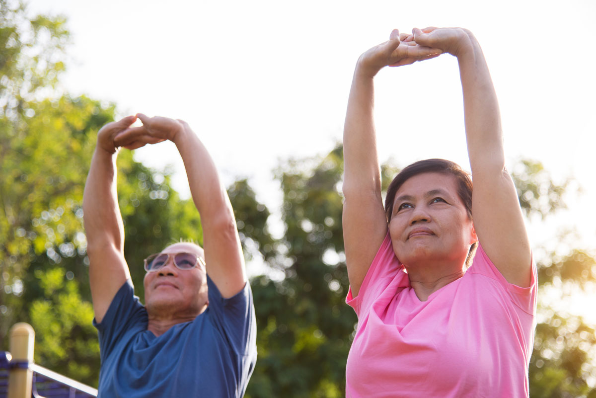 Stretching for the elderly: a complete wellness cycle